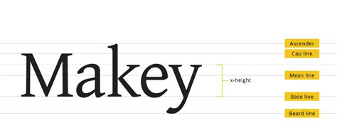 image gallery lines typography
