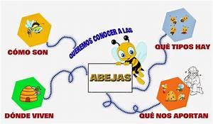 Escuela de Educacion Infantil José Zorrilla: LAS ABEJAS: MAPA CONCEPTUAL
