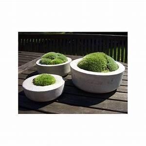 Blumentöpfe Aus Beton : ber ideen zu gartendeko selbstgemacht auf ~ Michelbontemps.com Haus und Dekorationen