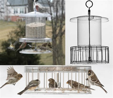 all weather clear weatherproof bird feeder 6 quart with