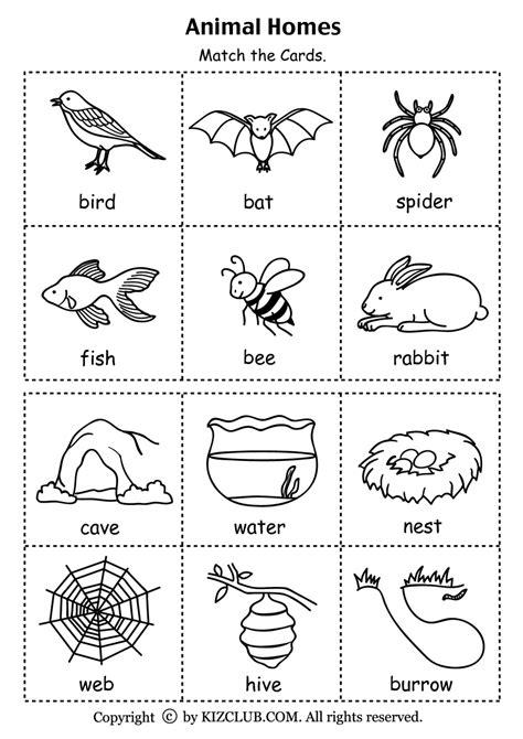 animals and habitats worksheets 122 | animal habitats for kindergarten preschoolers lesson plans habitat 2
