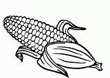 Corn Coloring Pages sketch template
