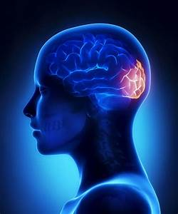 Traumatic Brain Injury And Drug Use U2014a Closer Look