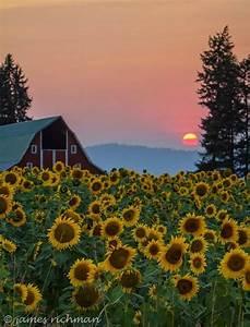 The Pacific Northwest Inlander
