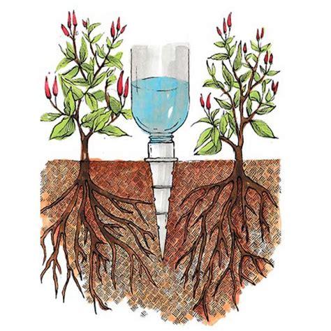 10 วิธี 'รดน้ำต้นไม้แบบประหยัดน้ำ' - K BLOCK C จำหน่ายหิน ...