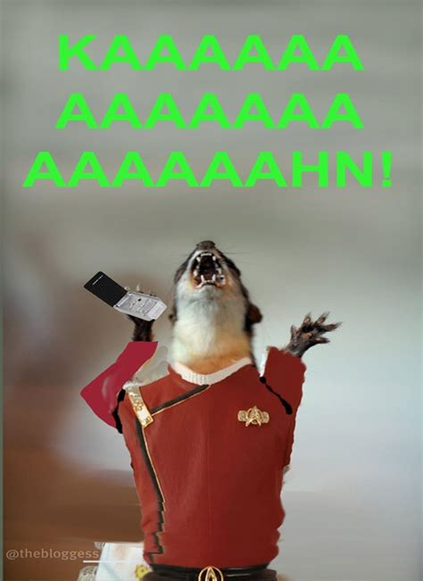 Weasel Meme - even hubby got in on the juanita weasel meme from the bloggess rodent love pinterest fun