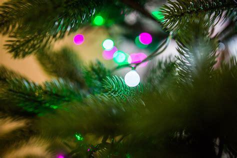 close   christmas decoration hanging  tree