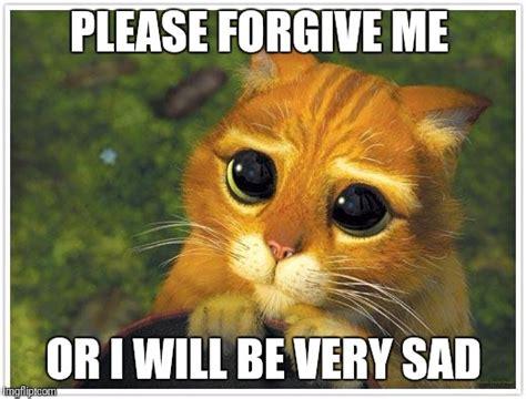 Forgive Me Meme - shrek cat meme imgflip