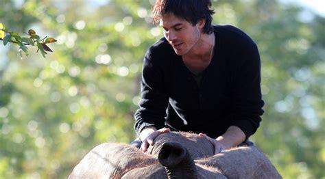 ian somerhalder just jared ian somerhalder partners with wildaid to save elephants
