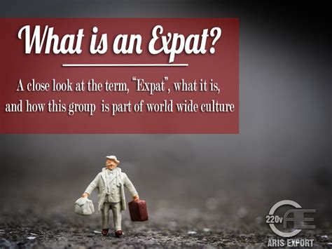 meaning of ex pat what is an expat aris moving
