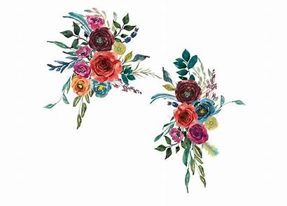 Hand Flowers Painted Clipart Watercolor Bold Colors
