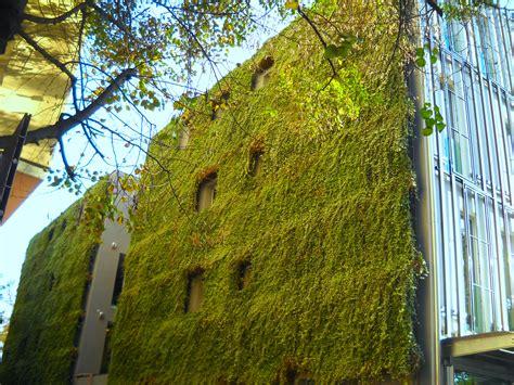 green garden fence green fence home decor sarasota bradenton plant service 1374