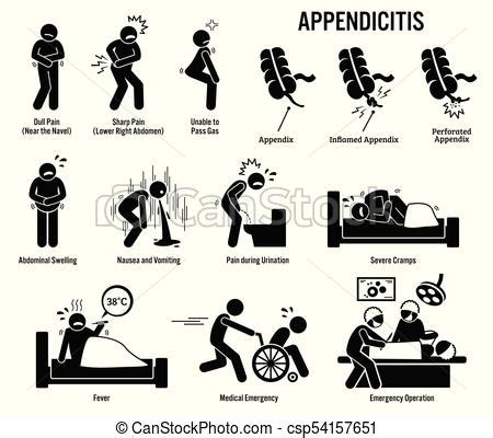 appendix and appendicitis icons pictogram and diagrams