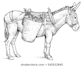donkey sketch images stock  vectors shutterstock