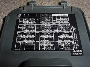 Need Photo Of Fuse Box Diagram For  U0026 39 99