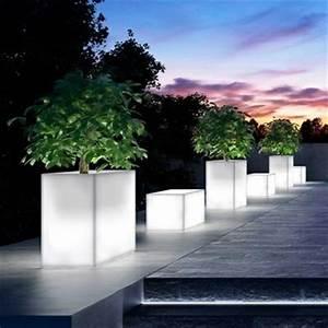 le pot lumineux en 60 images With idee allee de maison 18 creer un jardin avec des cactus et des palmiers