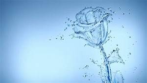 Rose, Water, Abstract, Wallpapers, Hd, Desktop, And, Mobile
