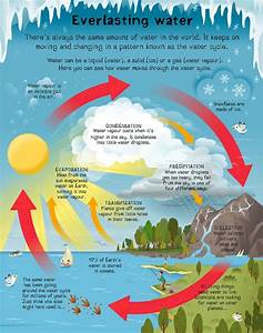 Water Cycle Diagram For Class 5