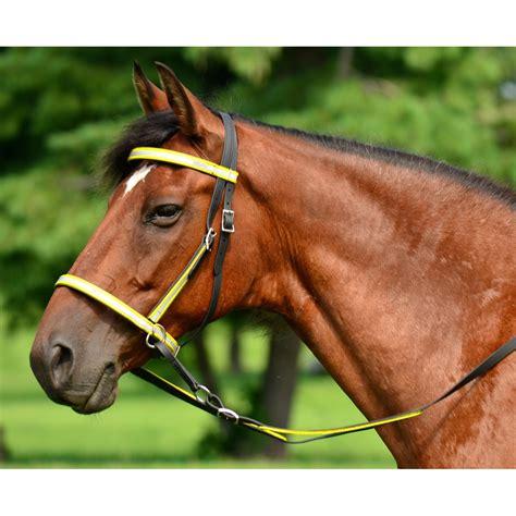 bridle bitless biothane beta reflective horse glo tack bridles alternative views twohorsetack