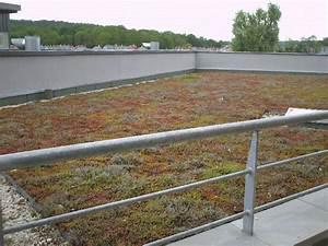Rousseau Etanchéité Toitures Terrasses Support béton inaccessible