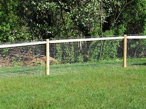 Dog fencing ideas related keywords dog fencing ideas for No fence for dog
