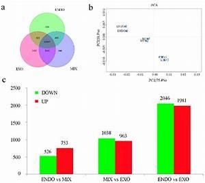 Bioinformatic Analysis Of Rna