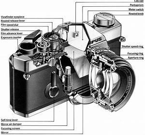 Slr Camera Diagram