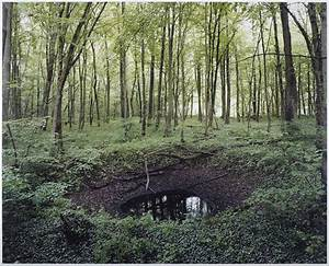 Haunting photos of the german countryside reveal scars for Haunting photos of the german countryside reveal scars left from wwii bombs