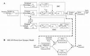 Computational Models For Auditory-nerve Fibers