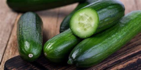cuisiner le concombre légumes d 39 été nos idées recettes