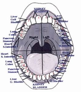 What Do Your Teeth Say About Your Health