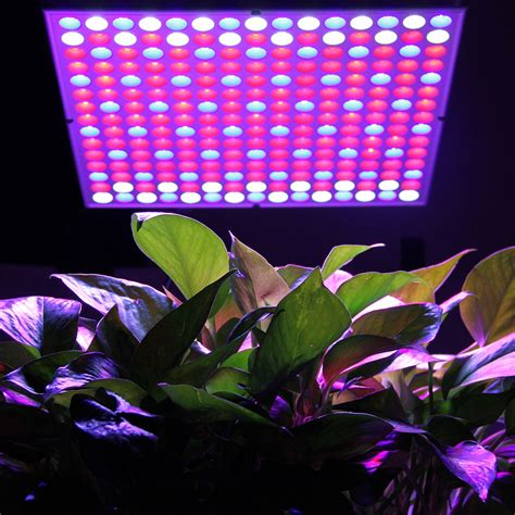 growing vegetables indoors with led lights excelvan 45w led grow light hydroponic plant veg flower