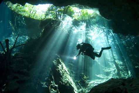 diving playa del carmen mexico pro dive mexico  allegro
