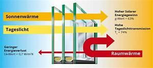 Heizkörper Austauschen Kosten : fenster austauschen kosten fenster austauschen kosten ~ Lizthompson.info Haus und Dekorationen