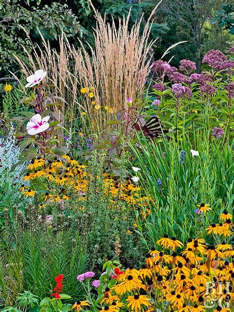 drought resistant garden drought tolerant gardens ugly or beautiful birds and blooms drought tolerant landscaping
