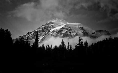 1000+ Amazing Black And White Photos · Pexels · Free Stock