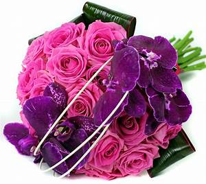 New Selection Of Beautiful Romantic Flowers At