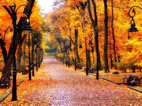Autumn Wallpapers by Autumn Wallpaper 8 Wallpapercanyon