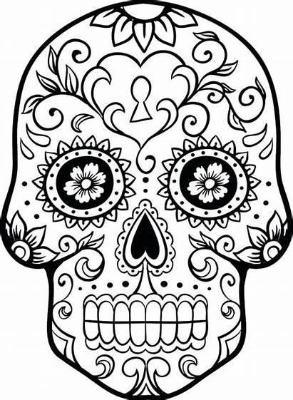 Coloring Pages Skeleton Head Skull Sugar Printable