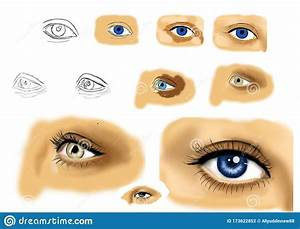 Hand Drawn Human Eye  Step By Step Drawing Guide