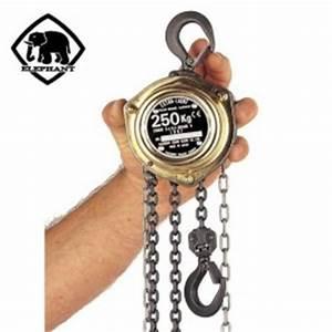 Palan A Chaine 500 Kg : mini palan manuel cha ne el phant 39 extra ligth 39 capacit 80 kg 250 kg palans manuels ~ Melissatoandfro.com Idées de Décoration