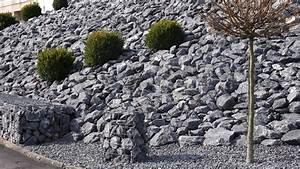 Steine Vor Der Haustür : w ste vor der haust r insekten leiden unter steinen im ~ A.2002-acura-tl-radio.info Haus und Dekorationen