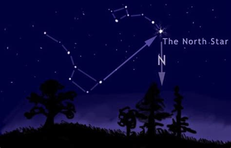 The North Star To Guide Your Startup
