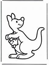 Kangaroo Coloring Coloringpages1001 Printable Colouring Colour Sheets Australia sketch template