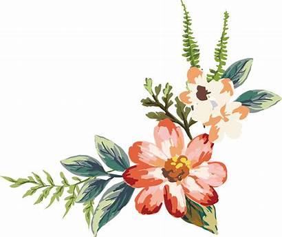 Watercolor Flowers Drawing Painting Acuarela Flower Flor