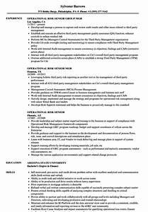 Communication Specialist Resume Operational Risk Senior Resume Samples Velvet Jobs