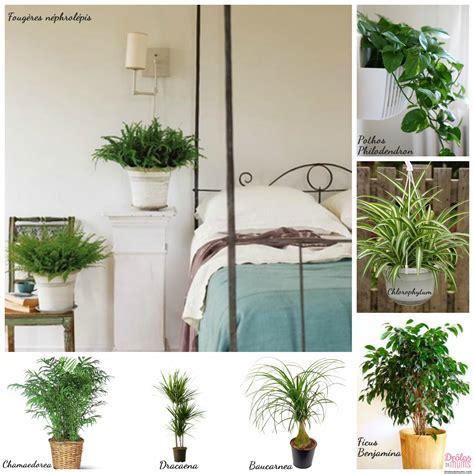 quelle plante pour une chambre a coucher atlub com