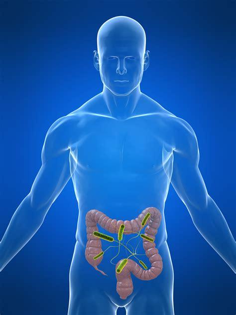 apc si鑒e social bacteria e ca ţap ispăşitor şi cauza ă a sindromului hemolitic uremic
