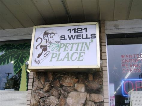 pettin place 13 reviews pet stores 1121 s wells ave