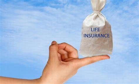 small business owner guide  life insurance small
